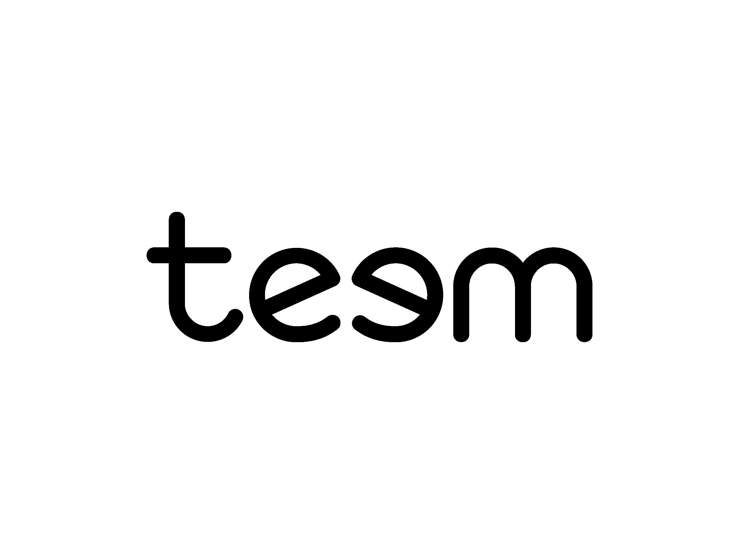 Portfolio logos_Teem